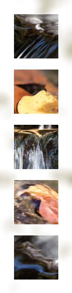 Water Portrait Perrin Clarke Photography